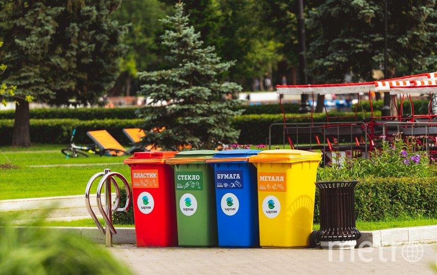 Раздельный сбор мусора в Москве. Фото pixabay.com