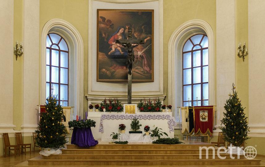 """Ель во многих конфессиях считается древом жизни. В католическом храме Святой Екатерины установили несколько хвойных деревьев. Фото Алёна Бобрович, """"Metro"""""""
