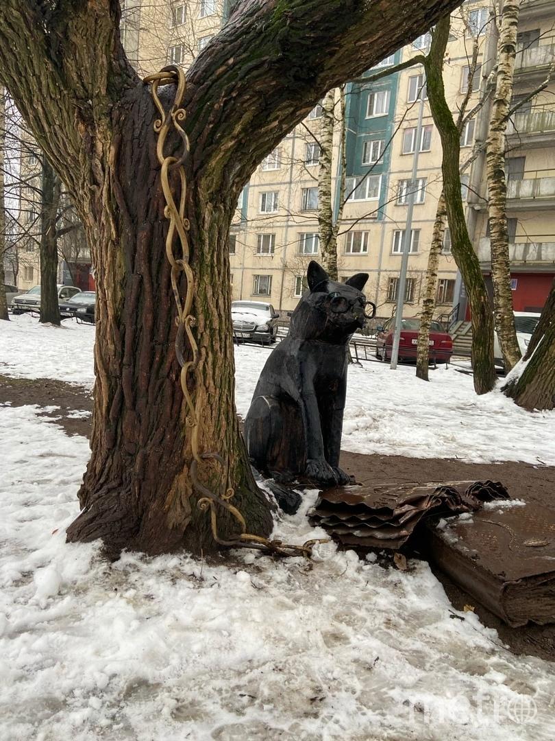 """Кот Ученый. Фото Ксения Гайзлер, """"Metro"""""""
