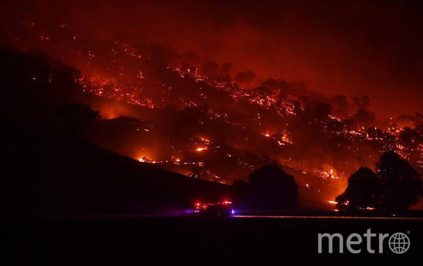 Пожары в Австралии. Фото Getty