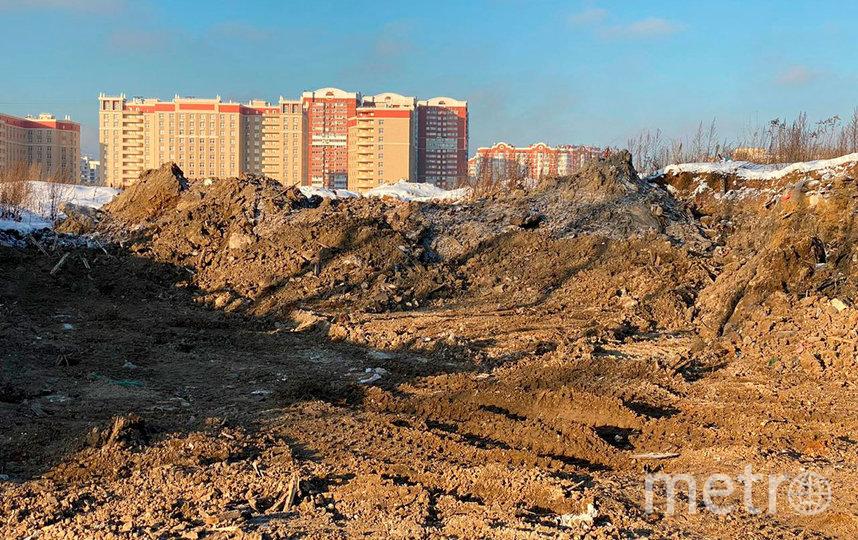 Научно-технологическая долина МГУ будет создана на месте свалки строительного мусора. Фото www.sobyanin.ru