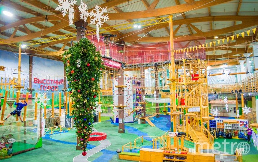 """Веревочный парк """"Высотный город"""" ждет маленьких гостей на квест. Фото предоставлены веревчоным парком """"Высотный город"""""""