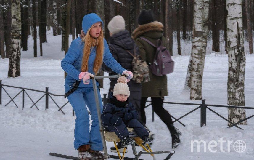 """Как можно развлечься в петербургских парках. Фото Алена Бобрович, """"Metro"""""""