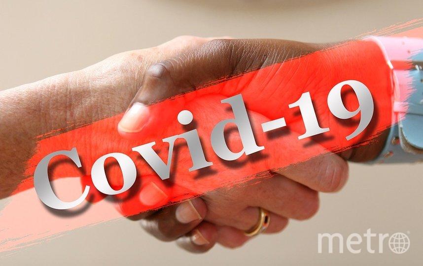 Американские ученые рассказали, как будет развиваться коронавирус. Фото Pixabay.