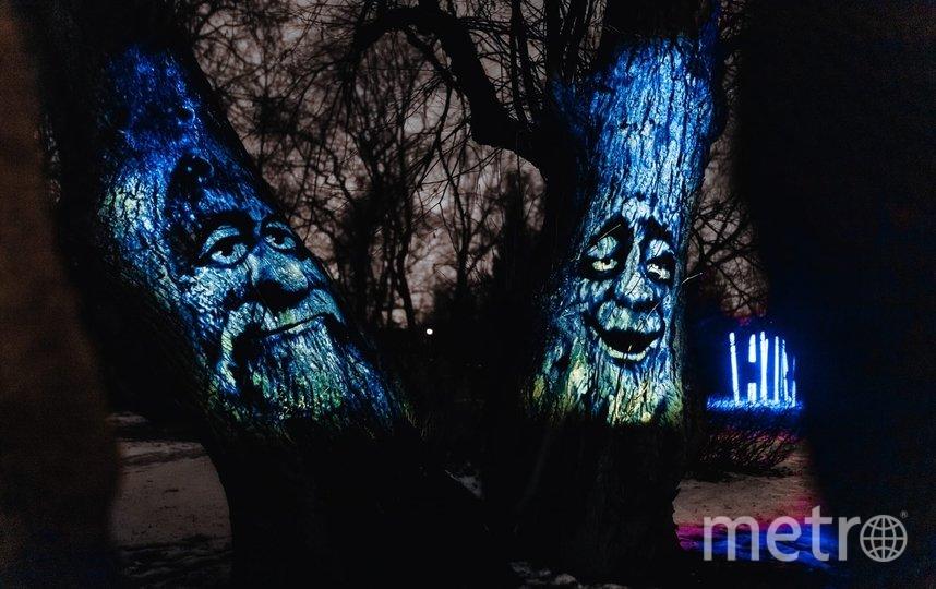 """Мультимедийная выставка """"Сад Света"""". Фото vk.com/sad_sveta"""