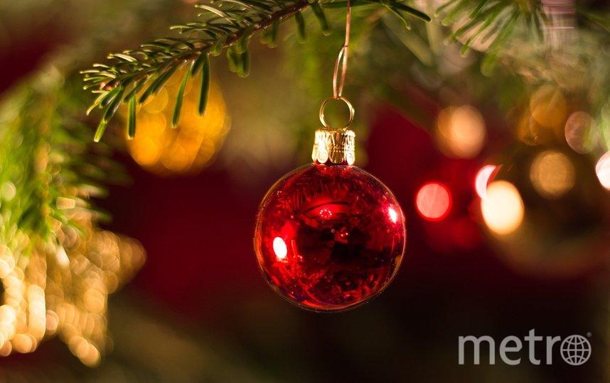 На переработку принимаются только елки и другие хвойные деревья без украшений. Фото Pixabay