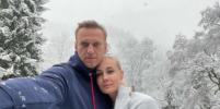 Алексей Навальный вернулся в Россию
