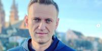 Алексей Навальный прилетел в Москву. Что произошло после посадки