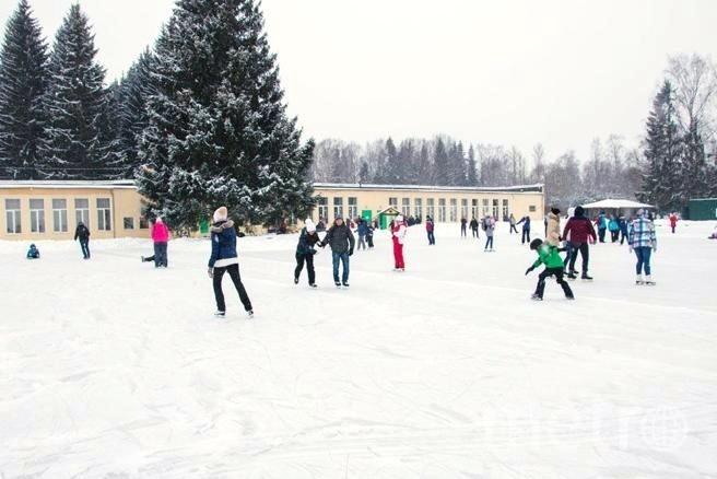 Каток в Павловском парке. Фото pavlovskmuseum.ru