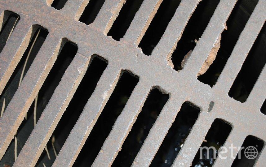 Самыми частыми причинами засора канализации в четвертом квартале 2020-го и начале 2021 года в Петербурге стали новогодние салаты и бытовой мусор. Фото pixabay.com