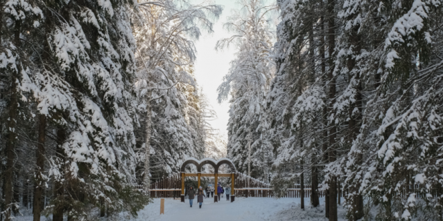 В Линдуловскую рощу за зимней сказкой.