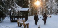 Путешествие в Линдуловскую рощу: куда отправиться из Петербурга за зимней сказкой