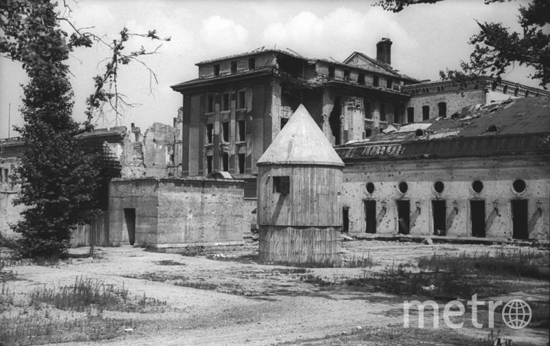 Гитлер совершил самоубийство в своём бункере. Фото Creative commons , Getty