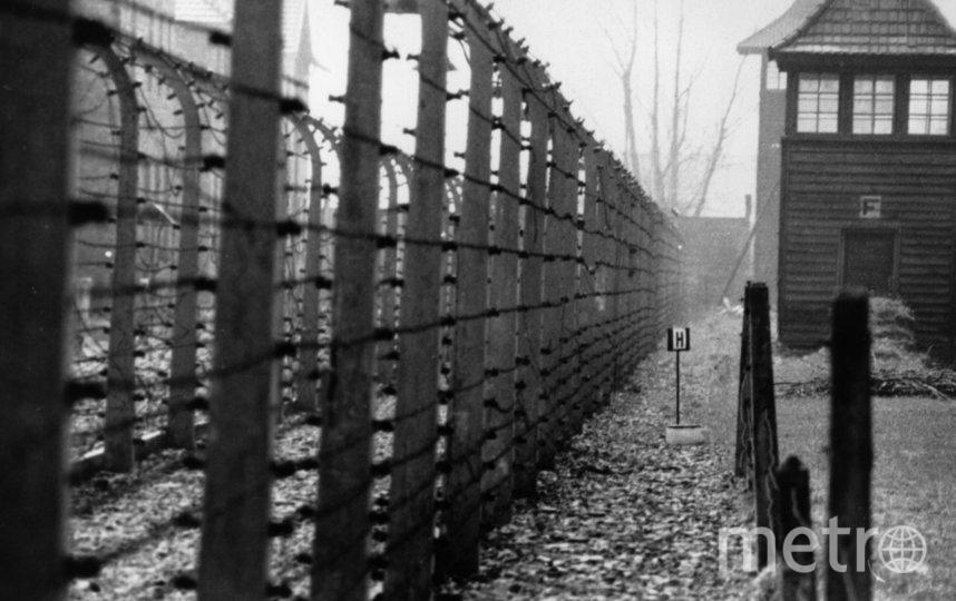 Освенцим. Фото Creative commons , Getty