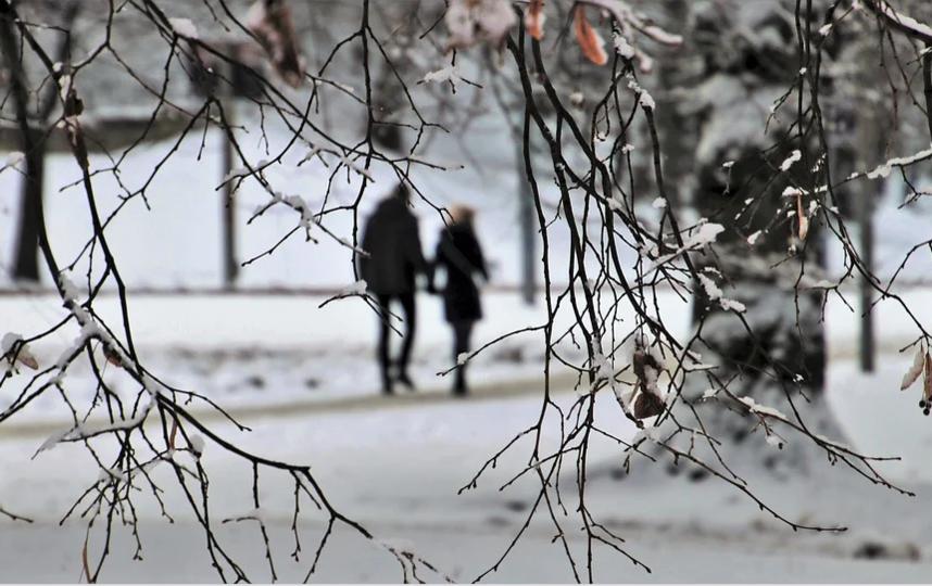 В феврале в Петербурге более солнечно, чем в январе. Такова статистика. Фото pixabay.com