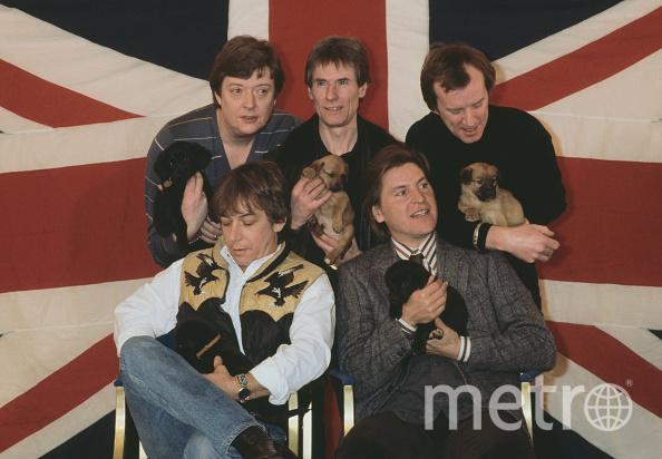 Группа The Animals. Фото Getty.