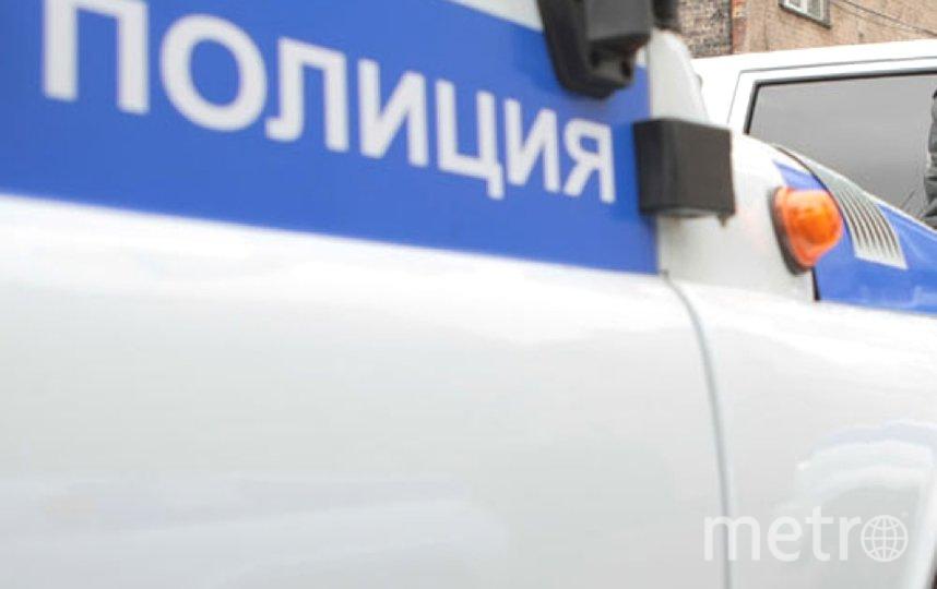 """Полиция задержала десятки людей в Петербурге. Фото """"Metro"""""""