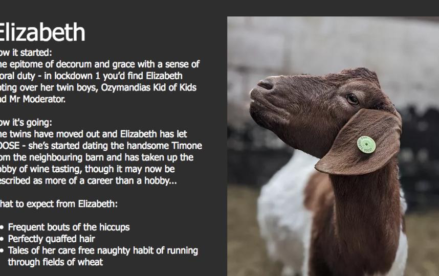 Вот так представлены козы на сайте фермера. Фото https://www.cronkshawfoldfarm.co.uk/goatsonzoom