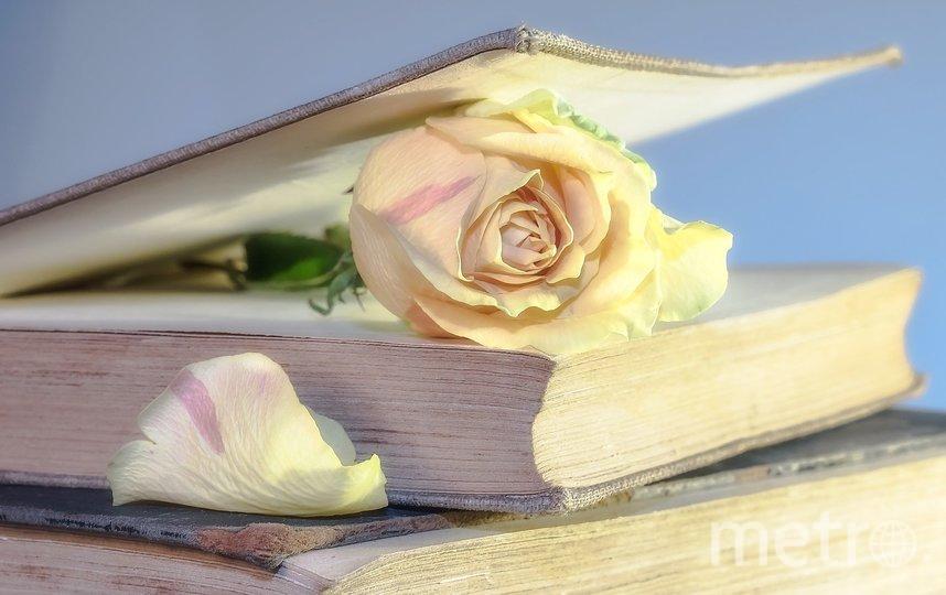 Библиотеки получат книги. Фото pixabay