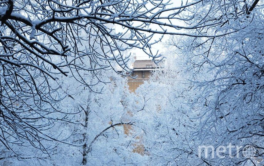 """Такая погода задержится в Петербурге на несколько дней. Фото Алена Бобрович, """"Metro"""""""