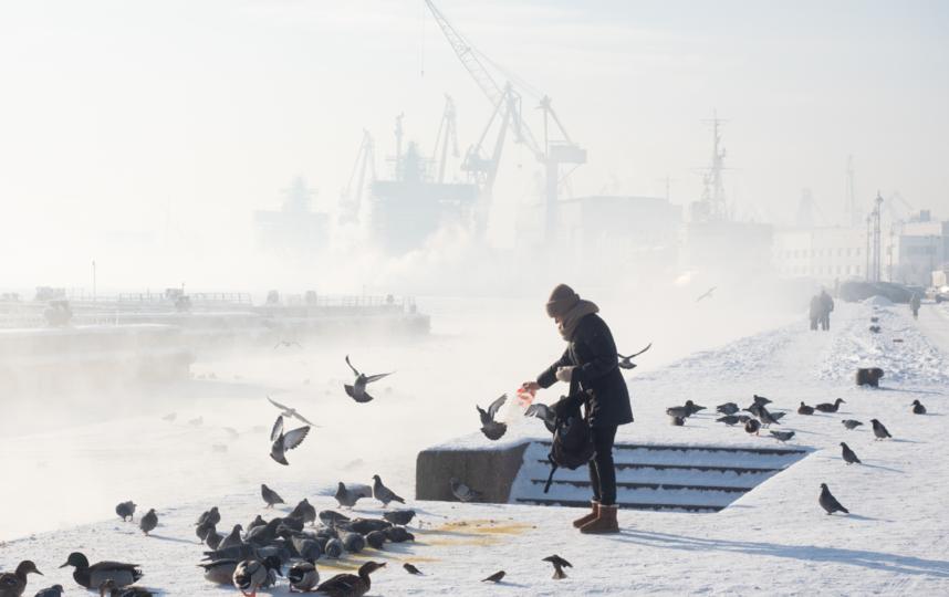 """Санкт-Петербург. Фото Святослав Акимов, """"Metro"""""""