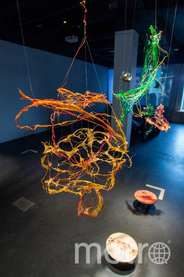 Выставка в галерее AIR будет работать до конца недели. Причём бесплатно. Фото Святослав Акимов.
