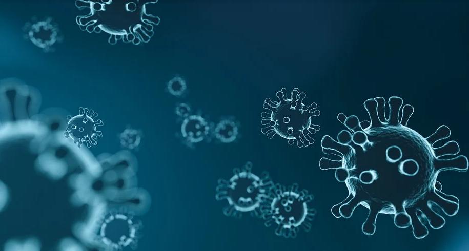 Исследователи считают, что штамм с трудом выявляется с помощью стандартных ПЦР-тестов. Фото Pixabay.