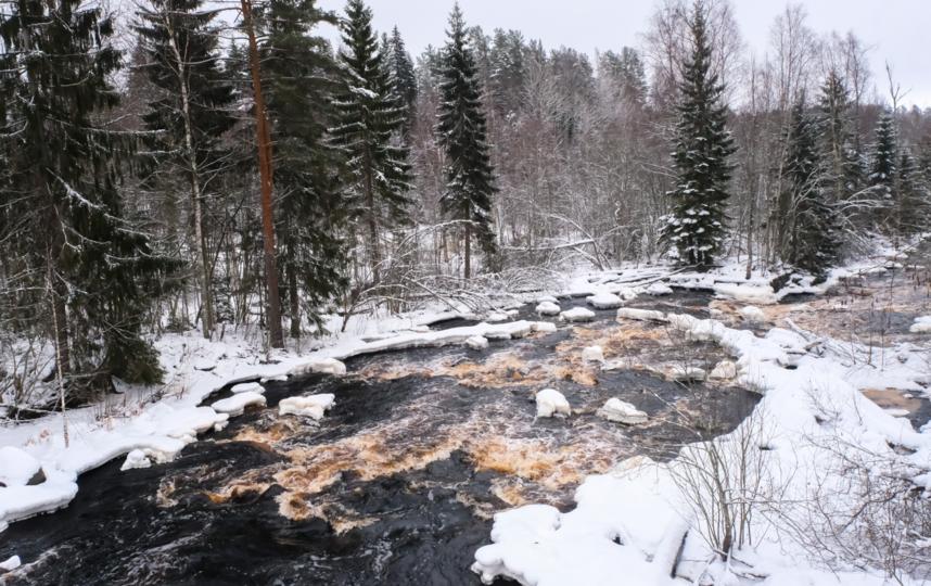 "Бурная река Уксунйоки. Фото Алена Бобрович, ""Metro"""