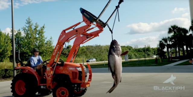 Скриншот с видео рыбалки.