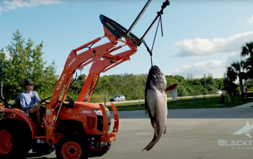 Скриншот с видео рыбалки. Фото Скриншот Youtube: https://www.youtube.com/watch?v=wOUqb5syHr4