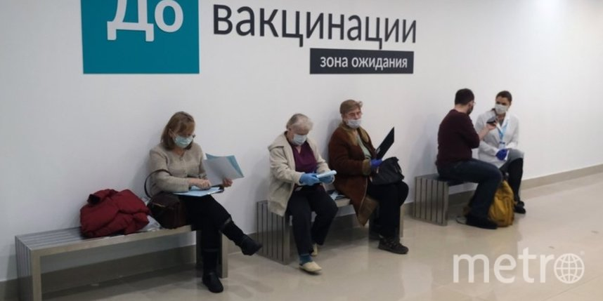Прививка от COVID-19. Чем отличаются три зарегистрированные российские вакцины