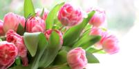 Список дел на март: как встретить весну