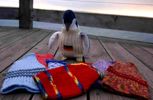 Птенцы своим ярким гардеробом, кажется, довольны. Фото предоставлены фондом по защите пингвинов в Австралии
