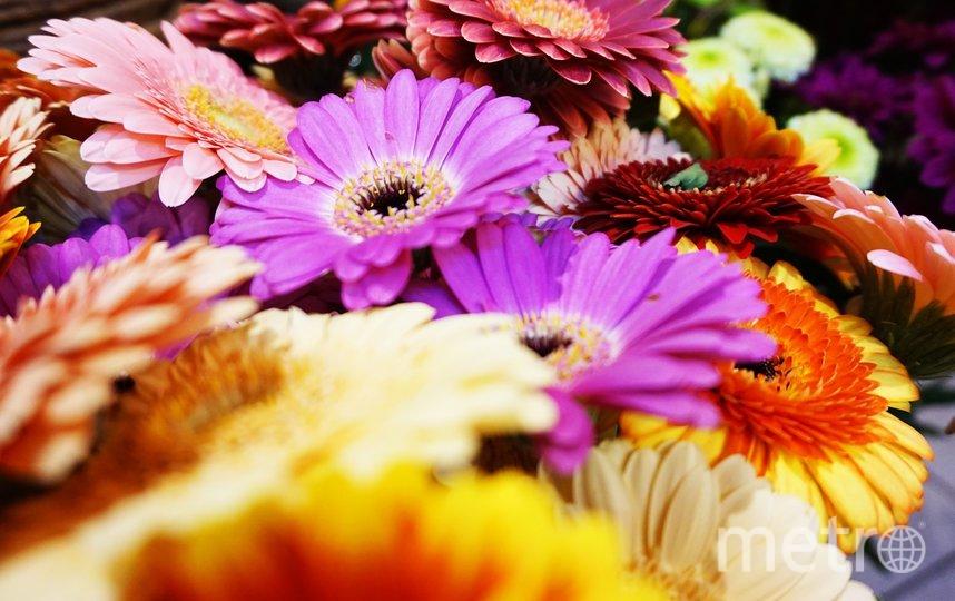 Флорист советует покупать цветы в проверенных магазинах. Фото pixabay