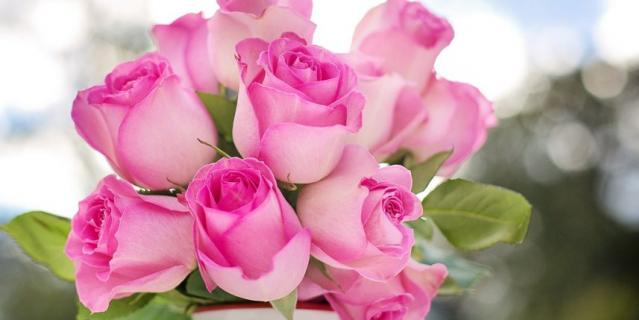 Роза – вечная классика – никогда не выходит из моды.