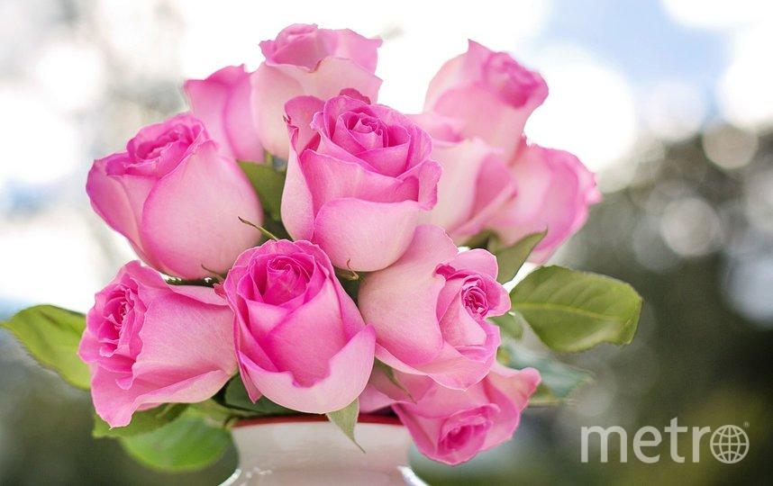 Роза – вечная классика – никогда не выходит из моды. Фото pixabay
