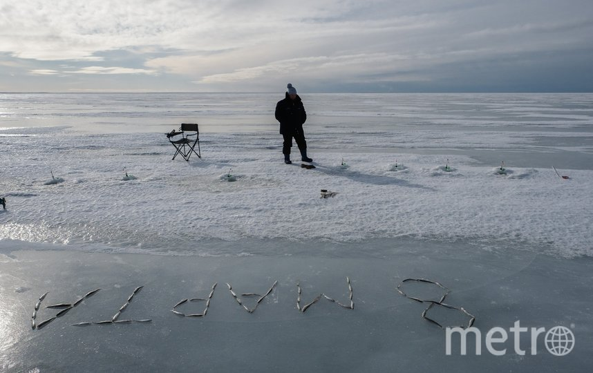 """Корюшку ловили недалеко от Зеленогорска. Фото Алена Бобрович, """"Metro"""""""