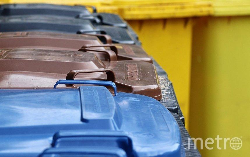 По мнению депутата, значительно улучшить положение с сортировкой может индивидуальная ответственность жителей за свои отходы. Фото pixabay.com, архивное