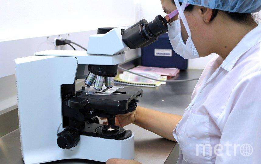Ученые надеются, что такие препараты могут стать более эффективными, чем инъекционные вакцины. Фото pixabay.com