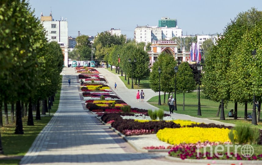"""Проект """"Плейлист #МосАртист   Музыка в парках"""" является отличной возможностью для начинающих музыкантов с авторскими треками показать своё творчество москвичам и гостям столицы в парках города. Фото pixabay.com, архивное"""