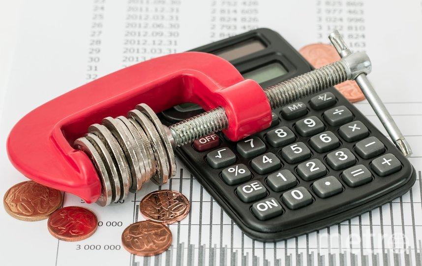 Ставка по подоходному налогу может измениться. Фото pixabay