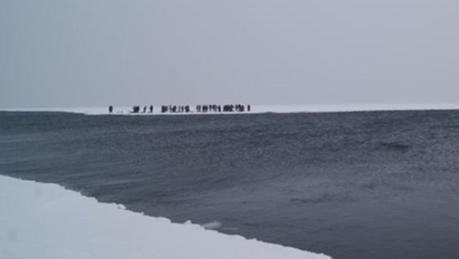 В Финском заливе спасатели сняли со льдины около 90 рыбаков. Фото vk.com/rybalka_severozapad.
