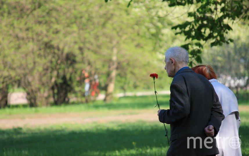 Столичные ветераны Великой Отечественной войнвы получат материальную помощь. Фото pixabay.com