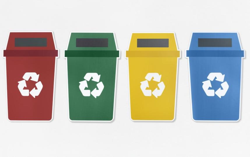 """Лекция """"Экологизация быта и раздельный сбор отходов. Первые шаги"""". Фото pixabay"""