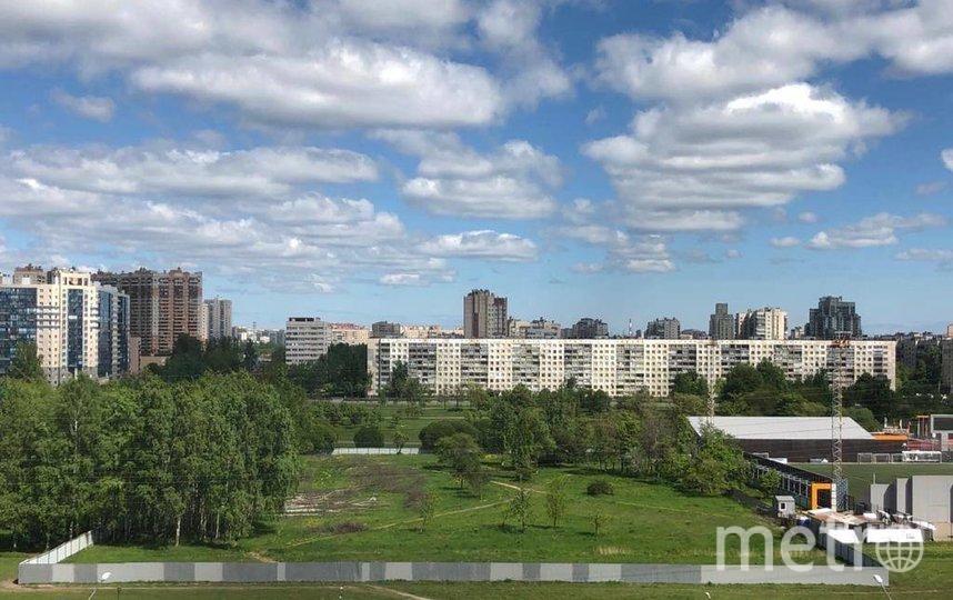 Муринский парк. Фото instagram.