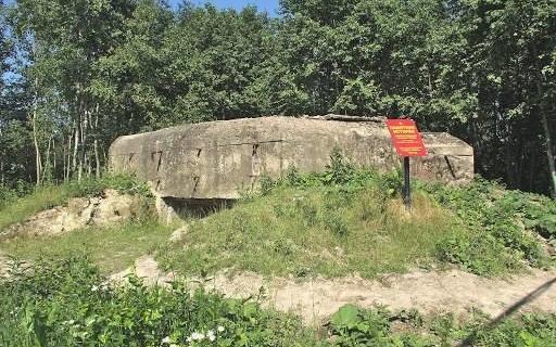 Территория у  памятника ДОТ №204.