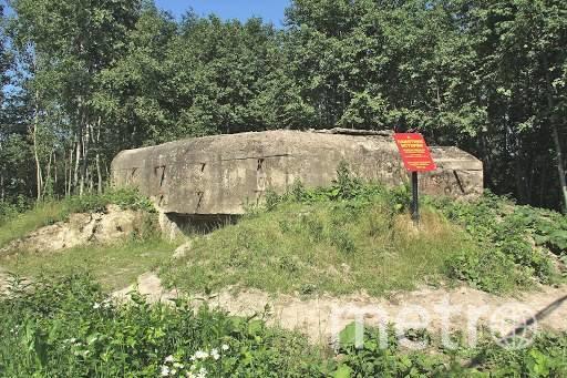 Территория у  памятника ДОТ №204. Фото instagram.