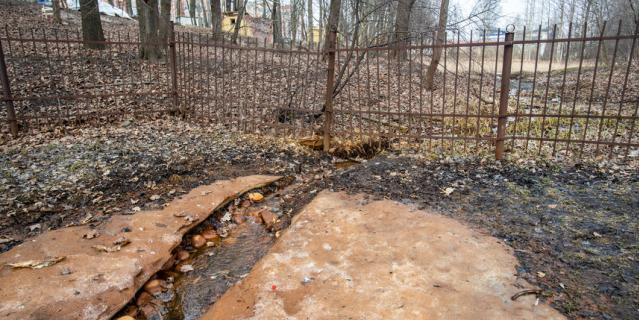 Парк усадьбы Орловых-Денисовых.