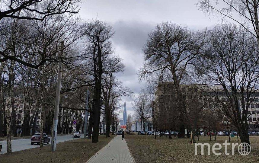 Прогноз погоды на 10 апреля. Фото facebook.com/LeusMikhail.