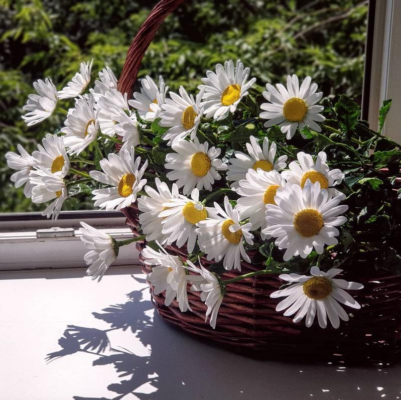 Стоять такой букет может годами. Фото instagram.com@flowers_by_natalya